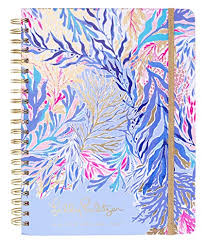 At A Glance Academic Planner 2020 17 Lilly Pulitzer Large Aug 2019 Dec 2020 17 Month