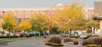 Resume & Cover Letter : University Of Dayton, Ohio