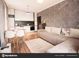 Het Interieur Van Moderne Lichte Gezellige Woonkamer Met Slaapbank