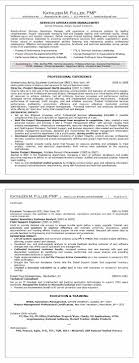 Professional Resume Writers Professional Resume Federal Social