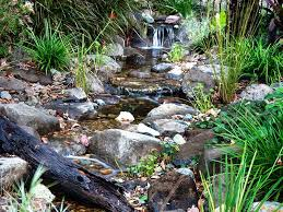 Small Picture Waterscapes Australia Streams Ponds and Natural Swimming Ponds
