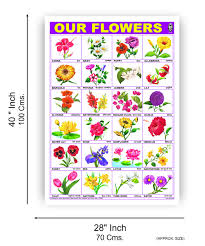 Buy Our Flowers Chart Size 70 X 100 Cms Without Pvc