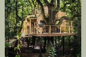 The Woodsmans Treehouse with Guy Mallinsons glamping in Dorset