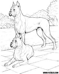 Homely Design Boxer Coloring Pages Page By Yuckles To Print For Kids