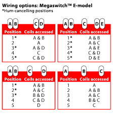 e model megaswitch stewmac com determine the polarity of each pickup coil and which wires are connected to each coil