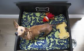 Step One Dog Bed with Storage & Cushion Cover