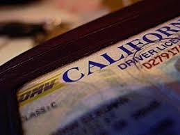 Center Studies For Fraud Driver's Immigration License
