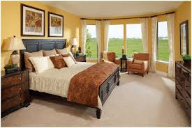 Small Master Bedroom Color Bedroom Master Bedroom Decor Ideas Pictures Bedroom Decoration