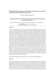 Erasmus montanus resume
