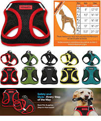 Voyager Harness Size Chart Top 5 Most Comfortable Dog Harnesses Pet Training Tip