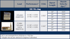 Applied Ballistics Now Offers Match Grade 300 Win Mag Ammo