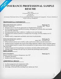 Insurance Agent Resume Examples Threeroses Us