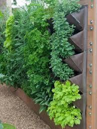 Vertical Garden Design Ideas Best Decorating Design