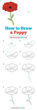 How To Draw A Poppy Really Easy Drawing Tutorial