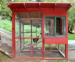 Cool chicken house by David Rosen an Associate Producer at CBS News in New  York His goal in addition to sheltering four egglaying hens was to  design a