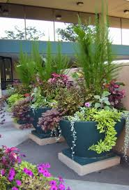 Small Picture Container garden styles