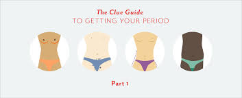 Pubic Hair Growth Chart Part 1 The Clue Guide To Getting Your Period Clued In