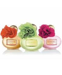 <b>Coach Poppy Citrine Blossom</b> Eau de Parfum Spray for Women, 3.4 ...