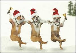 Bulldog Christmas Cards English Bulldog Christmas Cards, Bulldog ...