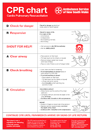 Free Printable Cpr Chart Cpr And First Aid Worksheet Printable Worksheets And