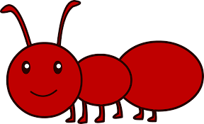 Image result for funny ants