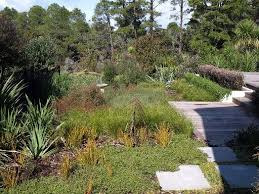 Small Picture Changing Spaces Ltd Landscape Design lifestyle blocks revegetation