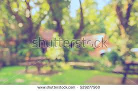 blurred outdoor backgrounds.  Outdoor Image Of Abstract Blurred Outdoor Coffee Hut In Garden On Day Time For  Background Usage  Throughout Blurred Outdoor Backgrounds U