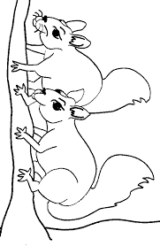 Small Picture Coloring Page Squirrel Animal Coloring Pages Squirrel Coloring