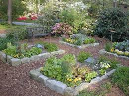front yard vegetable garden designs