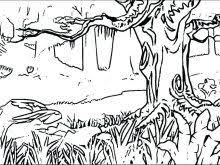 Forest Coloring Pages Forest Coloring Pages Printable At