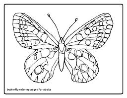 Outstanding Detailed Butterfly Coloring Pages Images Coloring Page