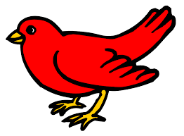 picture of red bird. Beautiful Red Red Bird Clip Art  Clipart Library To Picture Of