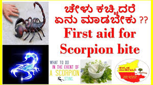 scorpion sting pain treatment