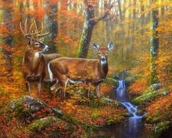 fall nature backgrounds with deer. Autumn Couple Throughout Fall Nature Backgrounds With Deer