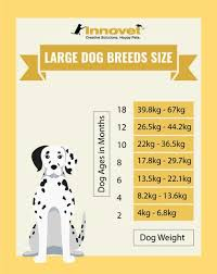 Airedale Weight Chart Puppy Growth Chart By Month Breed Size With Faq All You