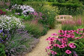 Small Picture images about Garden 1 on Pinterest Herbaceous border