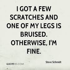 Quotes About Beautiful Legs Best of Steve Schmidt Quotes QuoteHD