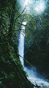 iPhone Wallpapers » Rainforest waterfall