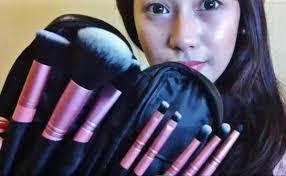 beauty cosmetics brush set