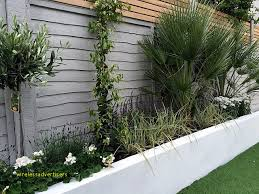 garden fence colour ideas inspirational render walls planting small garden design painted fence london