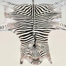 exotic real zebra rug authentic zebra skin rug zebra skin rugs for south africa exotic real zebra rug
