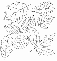 Small Picture Fall Autumn Leaves Coloring Pages Coloring Pages