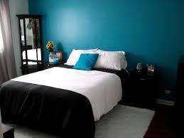 Extraordinary Turquoise Brown Bedroom Ideas Purple Bedroom Ideas Bedroom  Wall Ideas Turquoise Color Scheme Living Room Mens Bedroom Ideas