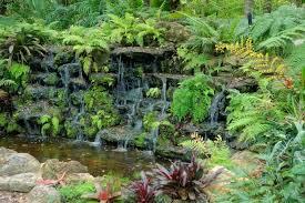 file oozing mckee botanical garden vero beach florida dsc03036 jpg