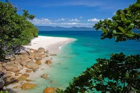Image result for fitzroy island nudey beach