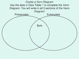 Compare Prokaryotic And Eukaryotic Cells Venn Diagram Ppt Prokaryotic Versus Eukaryotic Cells Powerpoint
