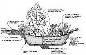 Small Picture Garden Design Garden Design with Rain Gardens Improve Stormwater