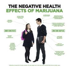 harmful effects of marijuana essay  harmful effects of marijuana essay