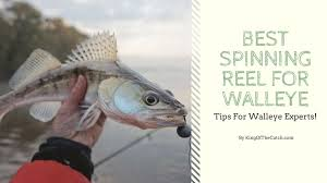 best spinning reel for walleye tips