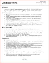 New Sales Rep Resume Personel Profile